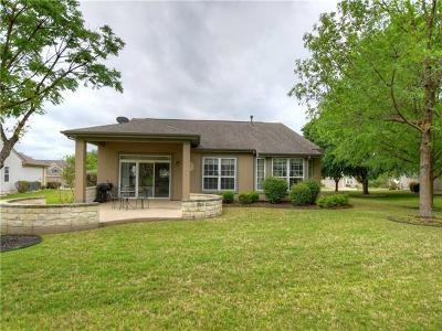 Georgetown Single Family Home For Sale: 319 Rio Grande Loop
