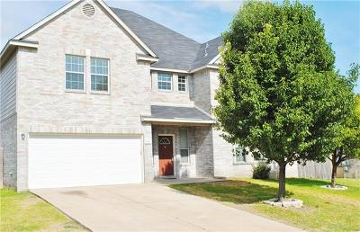 Round Rock Rental For Rent: 19616 San Chisolm Dr