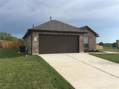 Austin Single Family Home For Sale: 10212 Bankhead Dr