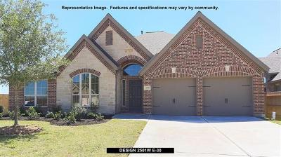 Georgetown Single Family Home For Sale: 1521 Lakeside Ranch Rd
