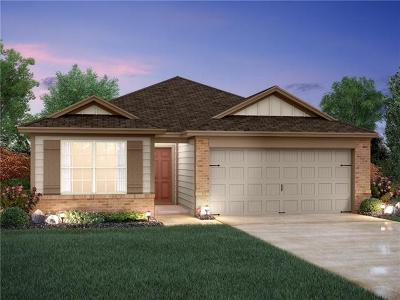 Kyle Single Family Home For Sale: 223 Simon