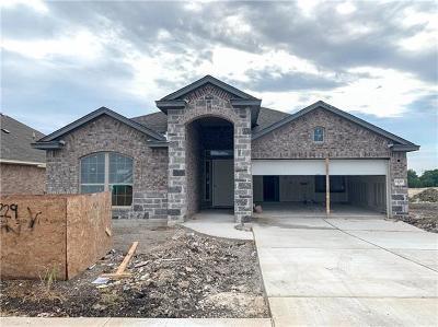Round Rock Single Family Home For Sale: 1229 Matt Ln