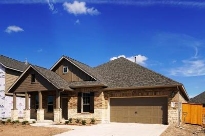 Manchaca Single Family Home For Sale: 12709 Twisted Root Dr