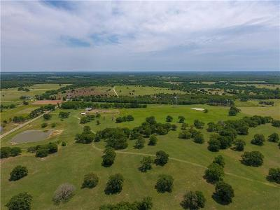 Burnet County, Lampasas County, Bell County, Williamson County, llano, Blanco County, Mills County, Hamilton County, San Saba County, Coryell County Farm For Sale: 2600 County Rd 475