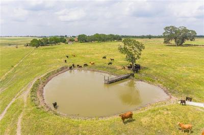 Schulenburg TX Farm For Sale: $510,160