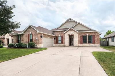 Pflugerville Single Family Home Active Contingent: 713 Willow Walk Dr