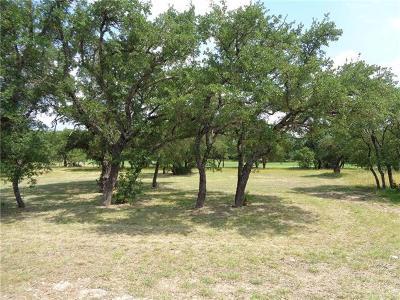 Burnet County Residential Lots & Land For Sale: 119 Rachel Loop