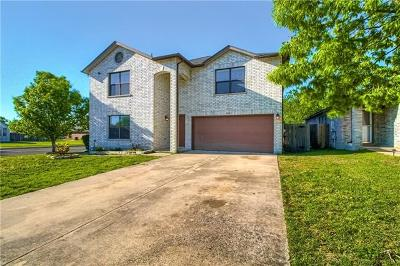 Round Rock Single Family Home For Sale: 2801 Adelen Ln