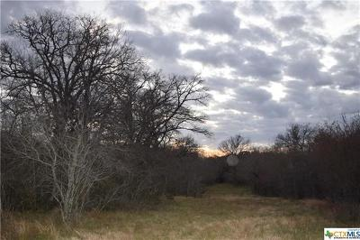 Guadalupe County Farm For Sale: 1271 Mill Creek Rd