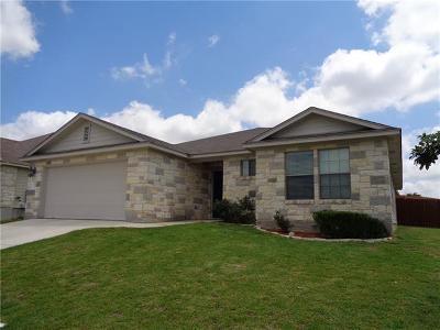 Burnet Single Family Home For Sale: 101 Gregory Cv