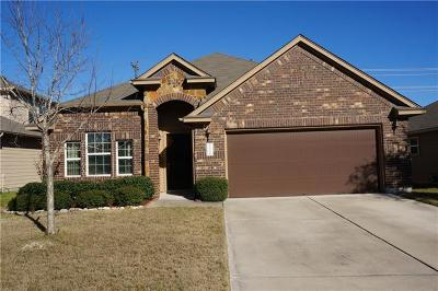 Kyle Single Family Home For Sale: 556 Bottle Brush Dr