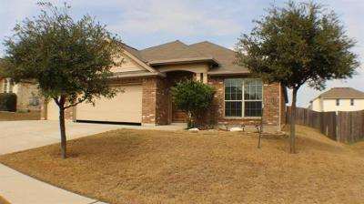 Round Rock Single Family Home For Sale: 532 Brown Juniper Way