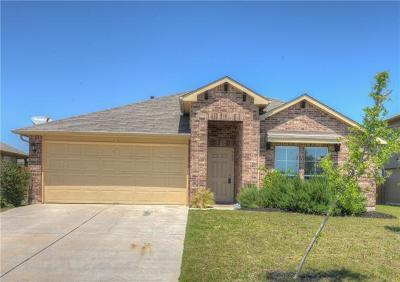 Kyle Single Family Home For Sale: 300 Zarya