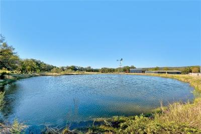 Dripping Springs TX Farm For Sale: $799,900