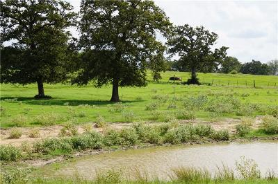 Bell County, Burnet County, Comal County, Fayette County, Hays County, Lampasas County, Lee County, Llano County, San Saba County, Travis County, Williamson County Farm For Sale: TBD County Road 323