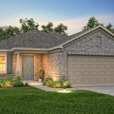 Buda Single Family Home For Sale: 437 Martha Dr