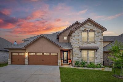 New Braunfels Single Family Home For Sale: 240 Bamberger Ave