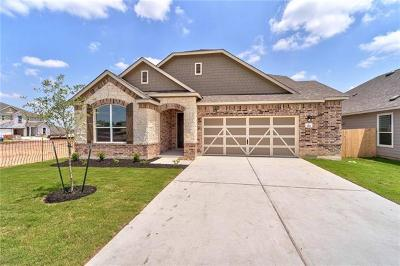 Buda, Kyle Single Family Home For Sale: 390 Sunlight Blvd