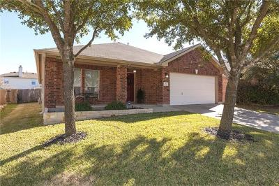 Pflugerville Single Family Home For Sale: 4224 Veiled Falls Dr