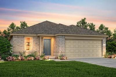 Buda Single Family Home For Sale: 436 Martha Dr