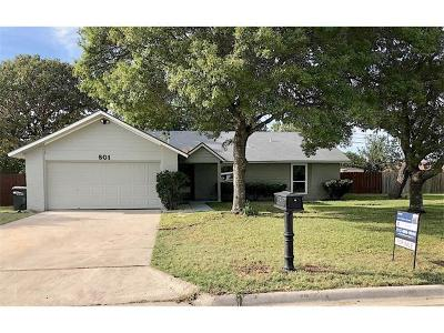 Georgetown Single Family Home For Sale: 801 River Bend Dr