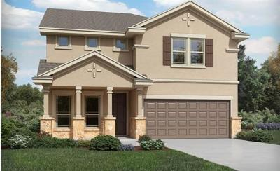 Pflugerville Single Family Home For Sale: 17406 Gabbro Dr