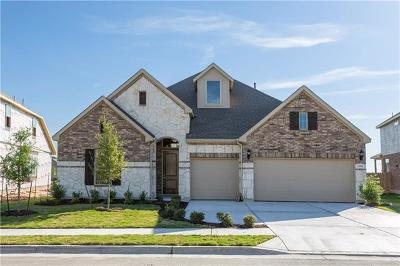 Pflugerville Single Family Home For Sale: 20616 Mouflon Dr