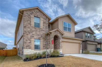 Kyle Single Family Home Active Contingent: 274 Coleto Creek Loop
