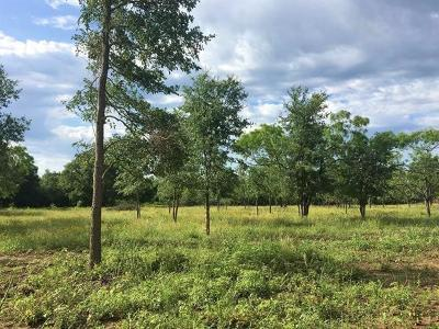 Lockhart Residential Lots & Land For Sale: 321 Burdette Wells Rd