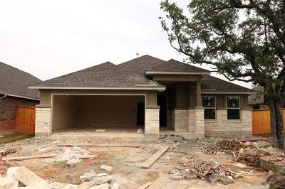 Round Rock TX Single Family Home For Sale: $341,157