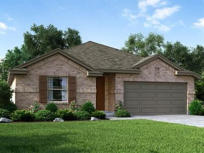 Hutto Single Family Home For Sale: 807 Kates Way