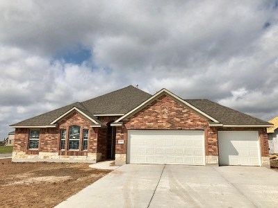 Pflugerville Single Family Home For Sale: 20300 Arctic Loon Pass