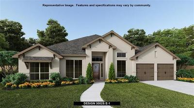 Travis County Single Family Home For Sale: 18208 Hewetson Cv