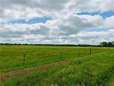 Bell County, Burnet County, Coryell County, Lampasas County, Llano County, McLennan County, Mills County, San Saba County, Williamson County Farm For Sale: County Road 437