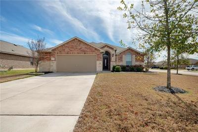 Kyle Single Family Home For Sale: 529 Evening Star Dr