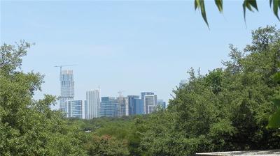 Austin Condo/Townhouse For Sale: 1135 Barton Hills Dr #228