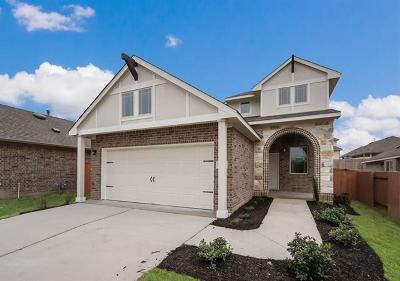 Kyle Single Family Home For Sale: 315 Windswept Way