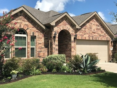 Austin Single Family Home For Sale: 809 Allende Bnd