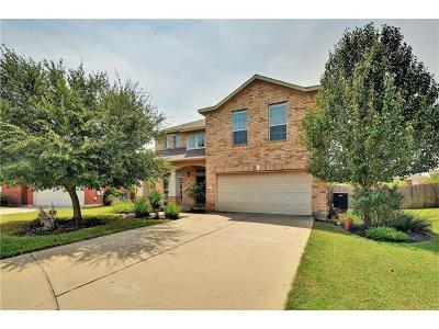 Hutto Single Family Home For Sale: 447 Swenson Dr