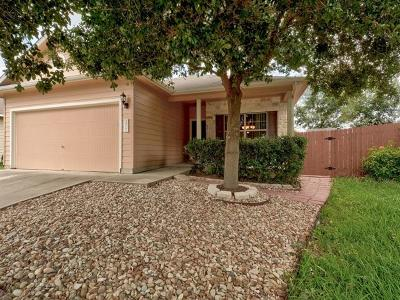 Austin Single Family Home For Sale: 3517 Bronco Bend Loop