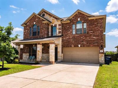 Liberty Hill Single Family Home For Sale: 205 Siltstone Way