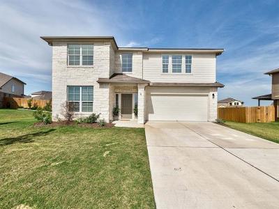 Kyle Single Family Home For Sale: 232 Bobolink Cv