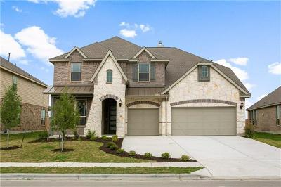 Pflugerville Single Family Home For Sale: 20609 Mouflon Dr