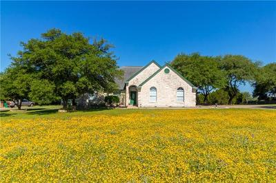 Austin Single Family Home For Sale: 9704 Derecho Dr