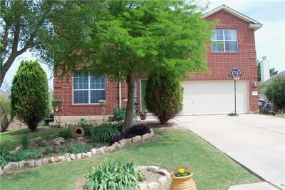 Kyle Single Family Home For Sale: 116 Ashwood S