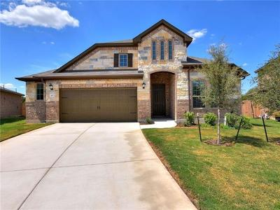 Leander Single Family Home For Sale: 413 Gabrielle Anne Dr