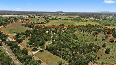 Burnet County Single Family Home For Sale: 541 County Road 123