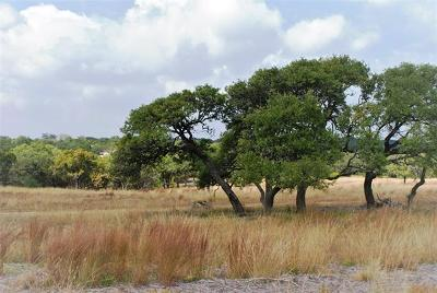 Dripping Springs TX Residential Lots & Land For Sale: $279,900