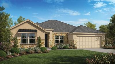 Dripping Springs Single Family Home For Sale: 173 Wynnpage Dr