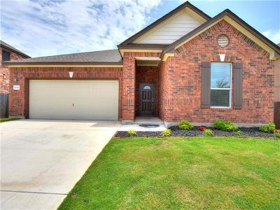 Georgetown Single Family Home For Sale: 30332 Tiger Woods Dr
